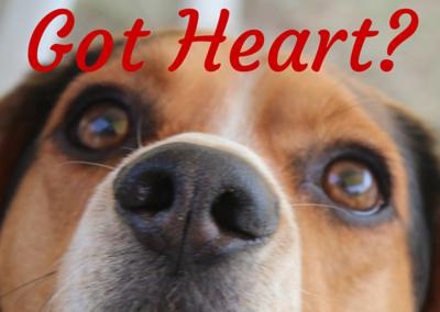 Got Heart